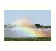 Country Rainbow Art Print