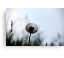 The Second Wish Canvas Print