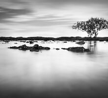 The Passing of Time by shuttersuze75