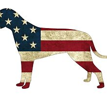 American Flag dog by ericbracewell