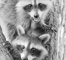 Little Bandits by WILDBRIMOWILDMAN