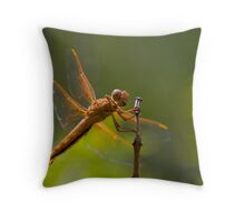 Smile, you are in Canded Camera Throw Pillow