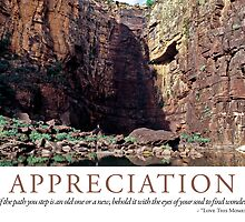 Appreciation by Lisa Frost