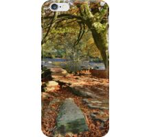 Exmoor: Autumn at Tarr Steps iPhone Case/Skin
