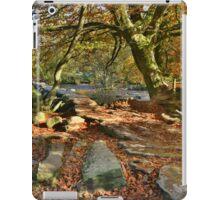 Exmoor: Autumn at Tarr Steps iPad Case/Skin