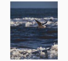 Seagull in flight Kids Tee