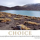 Choice by Lisa Frost