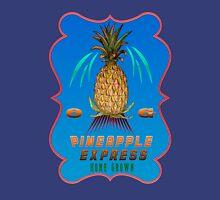 Weed Pineapple medicinal drug  gifts Mens V-Neck T-Shirt