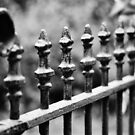 Wrought Iron Row by Astrid Ewing Photography