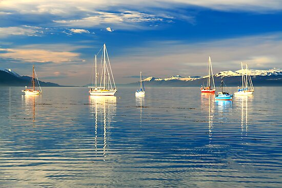Ushuaia Harbour by kmatm