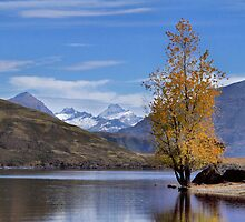 New Zealand - Lake Wanaka by mosaicavenues