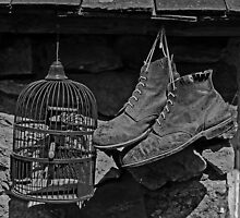 Birdcage and Boots by Yampimon