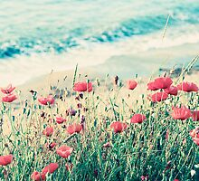 Sea of Poppies by Paula Belle Flores