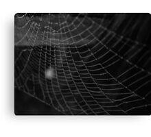 Spiderweb 1 Canvas Print