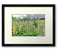 Anne Hathaway's house and garden Framed Print