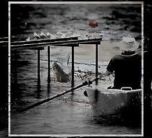 Row Row Your Boat by KarenShanks
