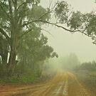 Foggy Morning by julie anne  grattan
