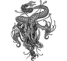 "Dragon - ""Colossus Dragon"" Photographic Print"
