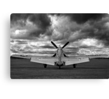 Mustang Dawn Canvas Print