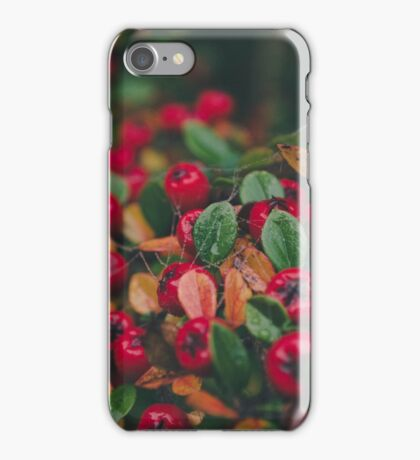 Tiny Winter Berries iPhone Case/Skin