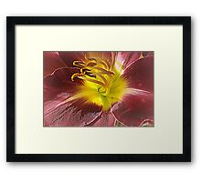 A Warm Embrace Framed Print