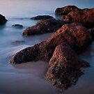 Low Tide... by GerryMac