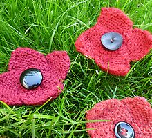 Hand Knitted Poppies by mrsmcvitty
