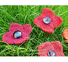 Hand Knitted Poppies Photographic Print