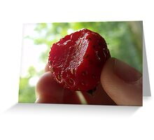 Summer of Strawberries Greeting Card