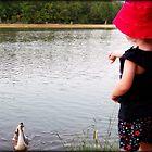 No, No, Goose! by peepholephotos
