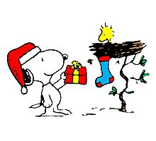 Snoopy and Woodstock Xmas Photographic Print