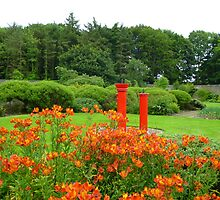 Red Water Features at Vandeleur Walled Garden Kilrush by April Jarocka