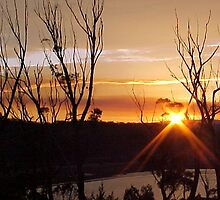Sunset Scamander River by Carol Peck