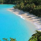 Beach and Turquoise Water by Roupen  Baker
