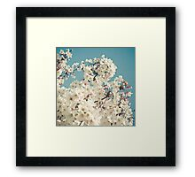 Buds in May Framed Print