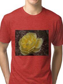 Yellow rose Leith Park Australia 20150824 0171   Tri-blend T-Shirt