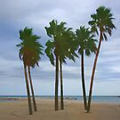 Palms by Aase