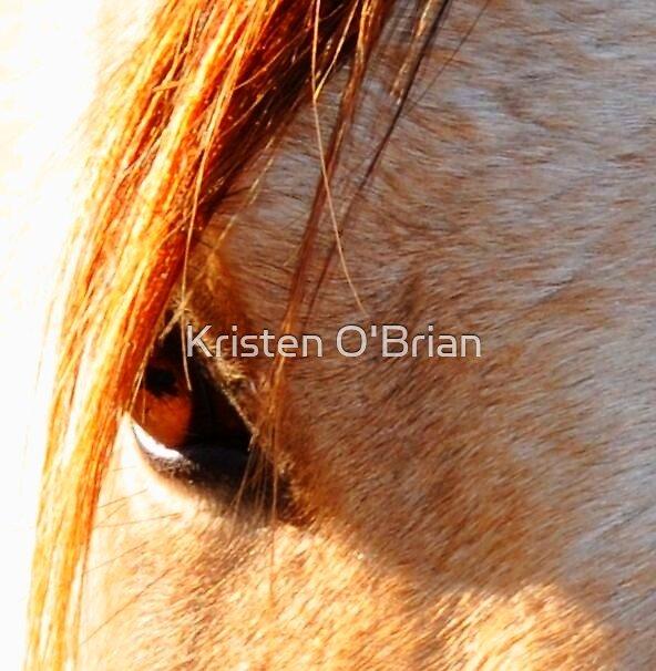 Beatuiful Eye by Kristen O'Brian