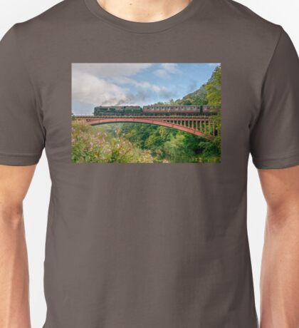 Taw Valley over the Severn Valley Unisex T-Shirt