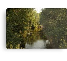 The Bark River Metal Print