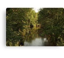 The Bark River Canvas Print