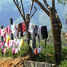 Laundry in the road by Esperanza Gallego
