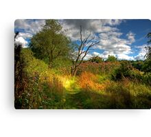 Along the River Avon Heritage Trail Canvas Print