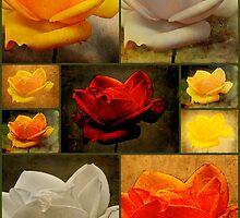 Enigma Of The Yellow Rose Collage by MotherNature