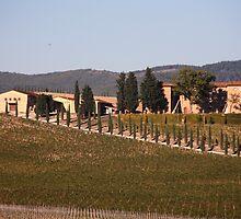 Villa Vista by phil decocco