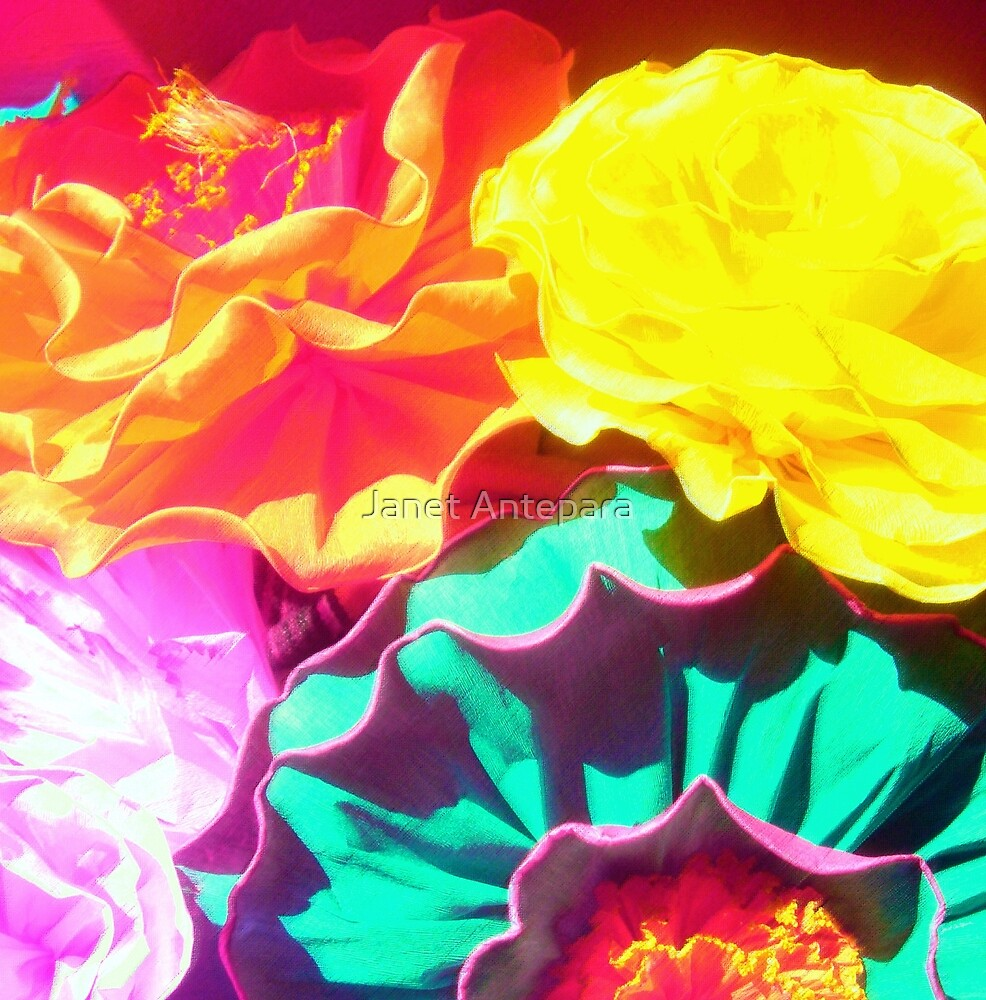 Flores by Janet Antepara