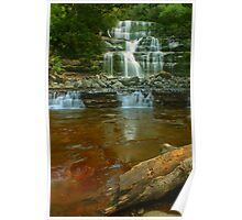 Liffey Falls with toffee & log Poster