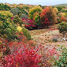 Fall in New England by Larry Glick