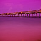 Dania Beach Pier at Twilight by Ali Zaidi