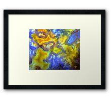 Yellow Plume Framed Print